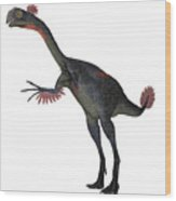 Gigantoraptor Dinosaur On White Wood Print