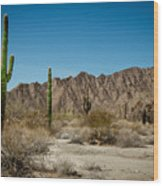 Gila Mountains And Sonoran Desert Wood Print