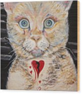 Gilbert With The Broken Heart Wood Print