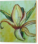 Gilded Lily Wood Print
