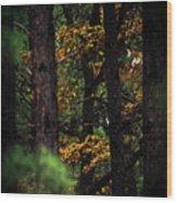Gilded Visions Wood Print