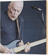 Gilmour #003 By Nixo Wood Print