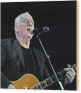 Gilmour #023 By Nixo Wood Print