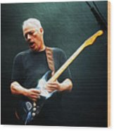 Gilmour #7602 By Nixo Wood Print