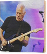Gilmour Maroon Nixo Wood Print