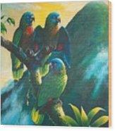 Gimie Dawn 1 - St. Lucia Parrots Wood Print