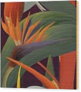 Ginger And Bird Of Paradise Wood Print