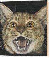 Ginger Cat Eyes Wood Print