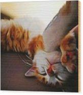 Ginger Feline Wood Print
