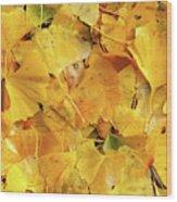 Ginkgo Biloba Leaves Wood Print