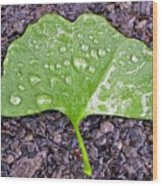 Ginkgo Leaf  Wood Print