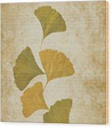 Ginko Leaves Wood Print