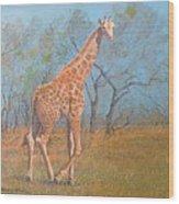 Giraffe - Safari - Summer 2008 Wood Print