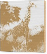 Giraffe 2 Wood Print