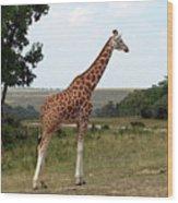 Giraffe 3 Wood Print