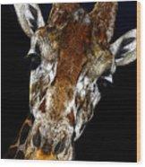 Giraffe Curiosity Wood Print