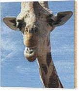 Giraffe Greeting Wood Print