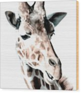 Giraffe II Wood Print