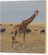 Giraffe In The Serengeti Wood Print