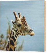 Giraffe Sky High Wood Print