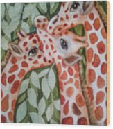 Giraffe Trio By Christine Lites Wood Print by Allen Sheffield