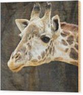 Giraffe Up Close Wood Print