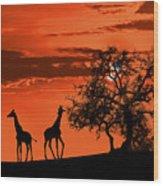 Giraffes At Sunset Wood Print