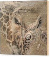 Giraffes, Big And Small Wood Print