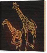 Giraffes Light Show  Wood Print