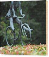 Girl On A Bicycle Wood Print