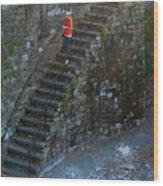 Girl On Stairs Wood Print
