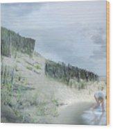 Girl Picking Up Sea Shells Wood Print