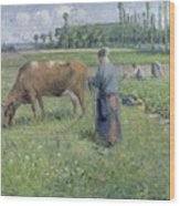 Girl Tending A Cow In Pasture Wood Print