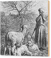 Girl Tending Sheep Wood Print