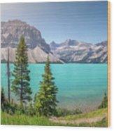Glacial Colors Wood Print