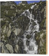 Glacial Waterfall Wood Print