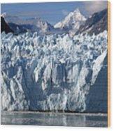 Glacier Bay 11 Photograph Wood Print