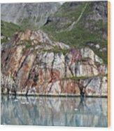 Glacier Bay 4 Photograph Wood Print