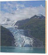 Glacier Bay Afternoon Wood Print