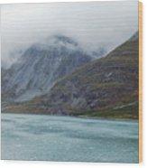 Glacier Bay Tarr Inlet Wood Print
