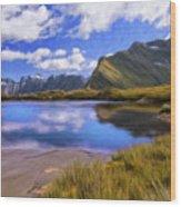 Glacier Lake On The Milford Track Wood Print