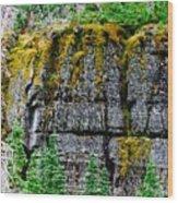 Glacier Np Moss Wood Print