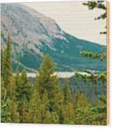 Glacier Np View Wood Print
