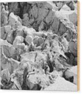 Glacier Overlook Wood Print