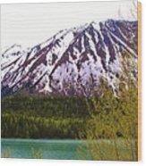 Glacier Waters Wood Print