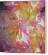 Glad Chiffon 3004 Idp_2 Wood Print