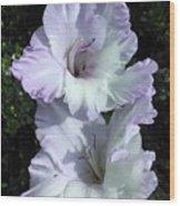 Glad Purple Perfection Wood Print