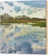 Glades Reflective 2 Wood Print