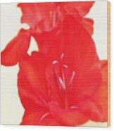 Gladiola Stem Wood Print