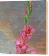 Gladiola Sunset Wood Print